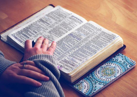 紙辞書を有効活用しよう!
